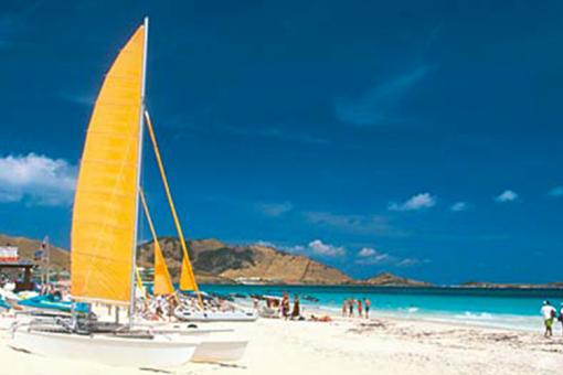 Dés le 1er février, de nouveaux tarifs sont proposés pour les Cartes Antilles-Guyane-Réunion et Combinée