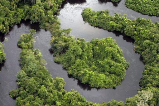 Prioriser la planète. L'engagement de Delta en faveur de la durabilité.
